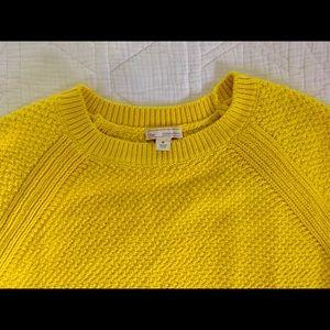 GAP Women's crew neck, knit sweater